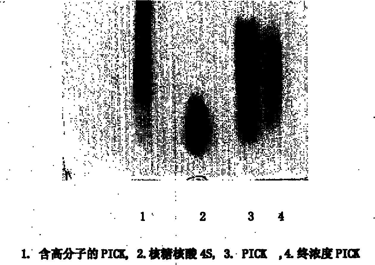 聚核苷酸组合物佐剂(公开号:CN101890161A)
