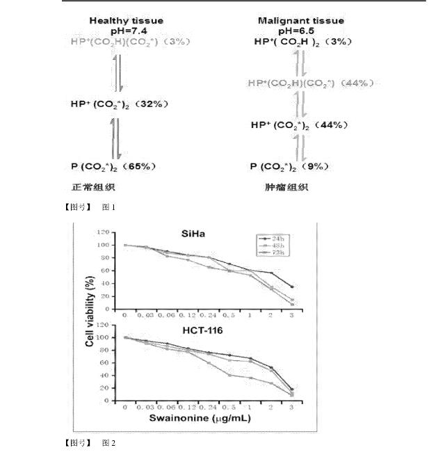 苦马豆素衍生物及其科研试剂的制备方法