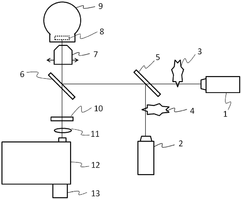 自组织单量子点的定位方法及装置