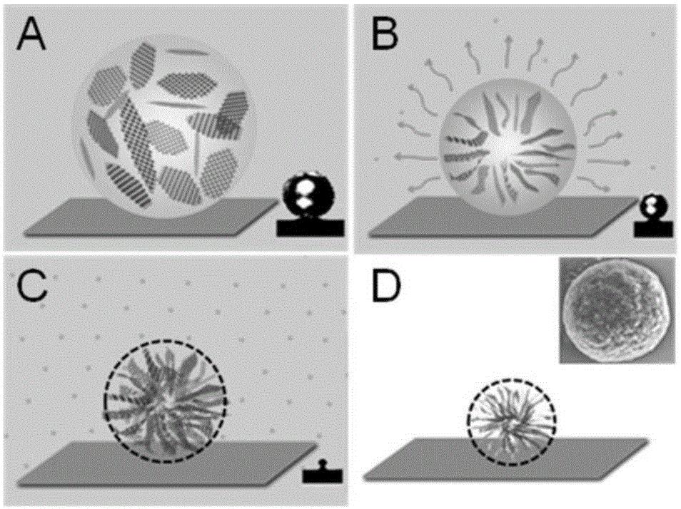 一种氧化石墨烯微球的制备方法