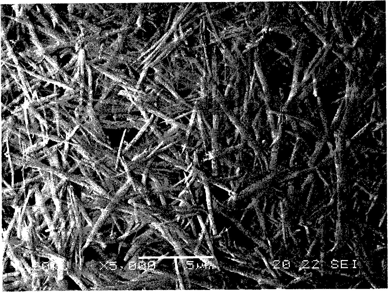 低温水热制备氧化铝晶须的方法
