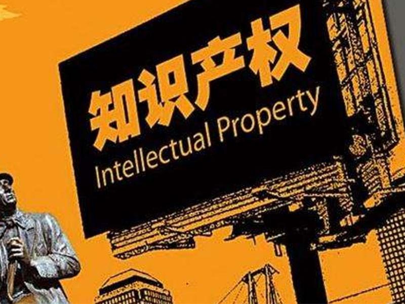 市人大常委會對知識產權審判工作進行視察