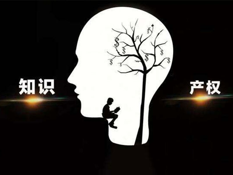 黑龙江省首次设立龙8奖 省知识产权局局长王伟群解读龙8奖励新政