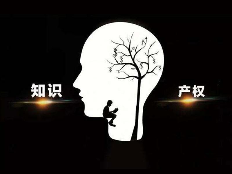 中共中央 国务院印发《知识产权强国建设纲要(2021-2035年)》